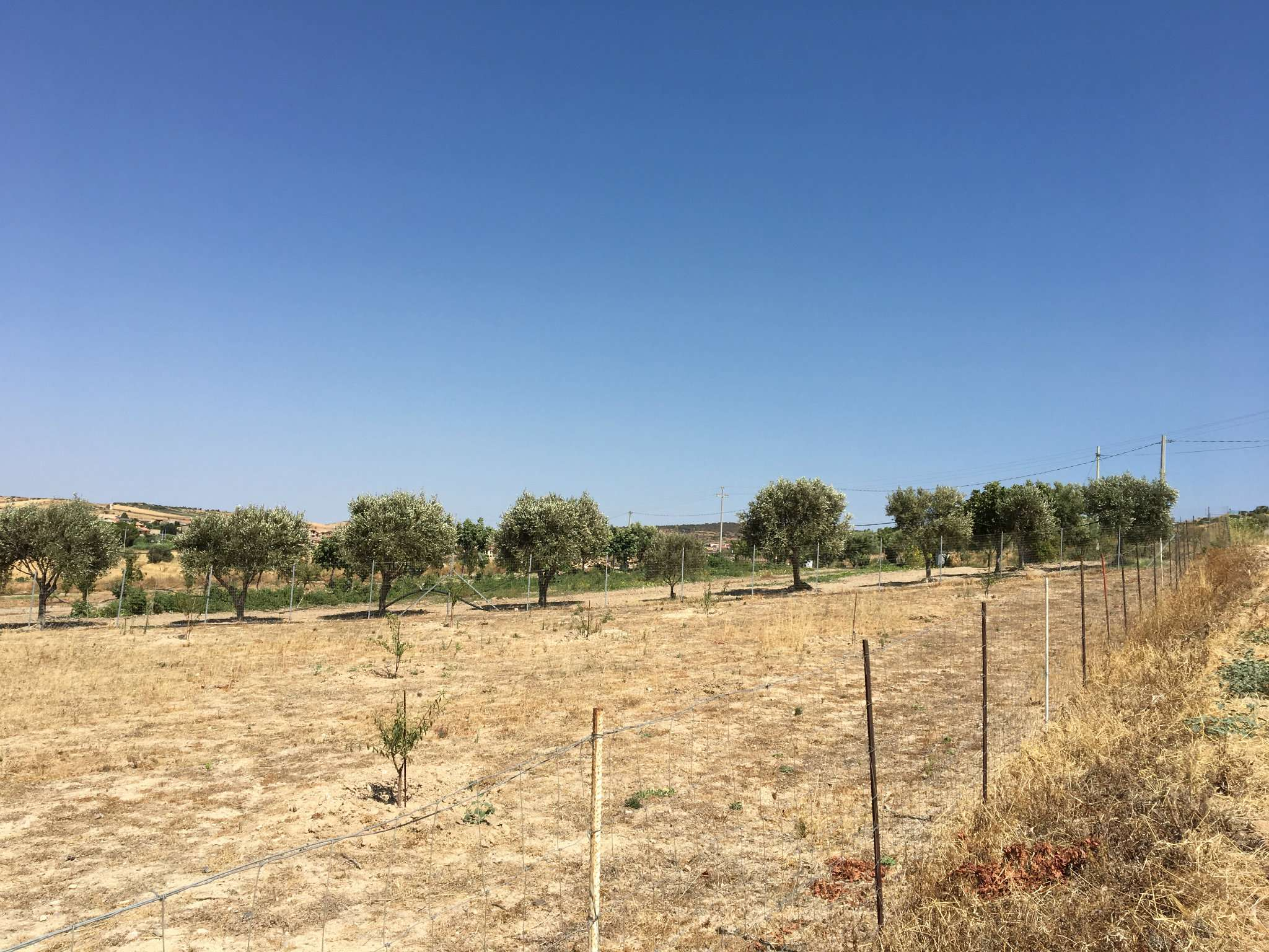 Terreno Agricolo in vendita a Settimo San Pietro, 9999 locali, prezzo € 9.100 | CambioCasa.it