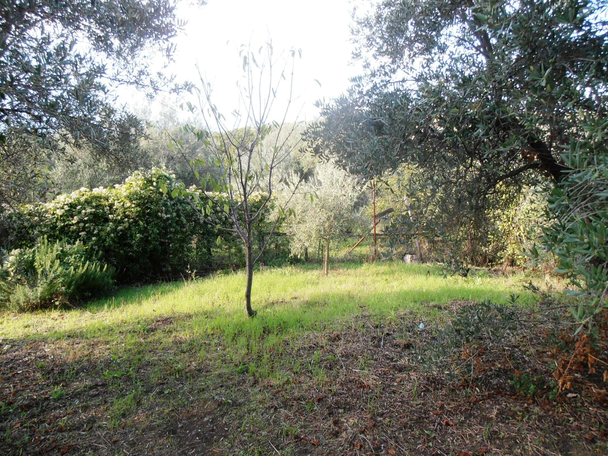 Terreno Agricolo in Vendita a Albano Laziale