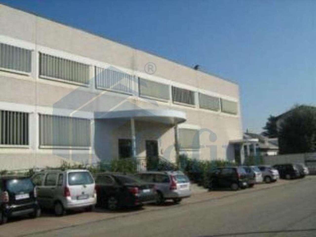 Ufficio / Studio in Affitto a Segrate