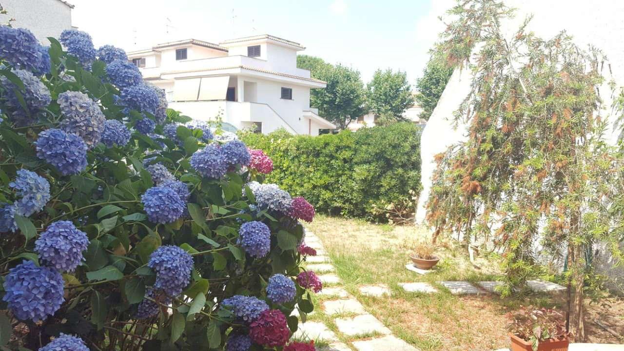 Villa a Schiera in Affitto a Ardea