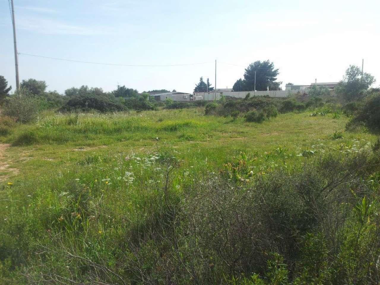 Terreno Agricolo in vendita a Massafra, 9999 locali, prezzo € 7.000 | CambioCasa.it