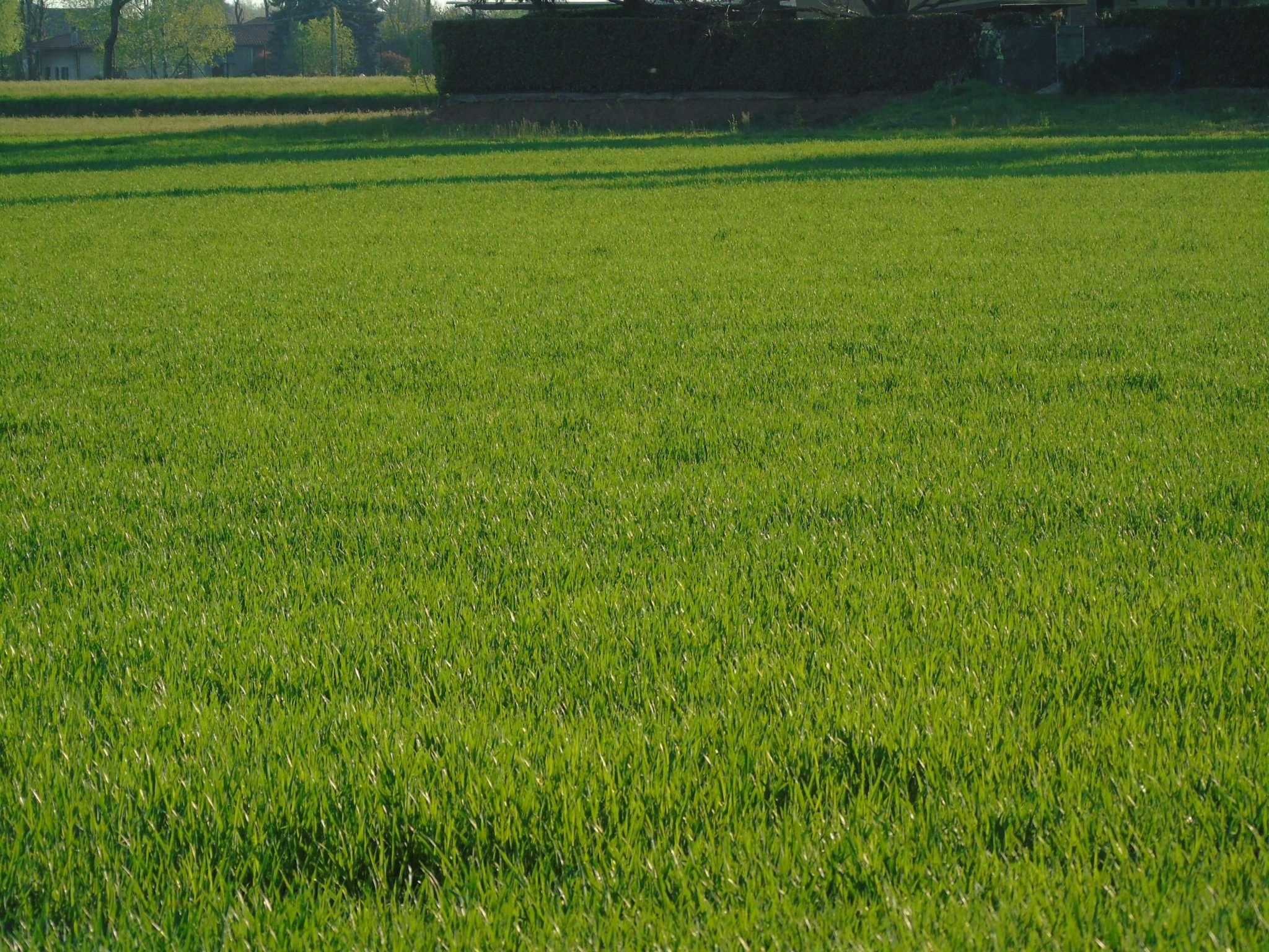 Terreno Edificabile Residenziale in Vendita a Uboldo