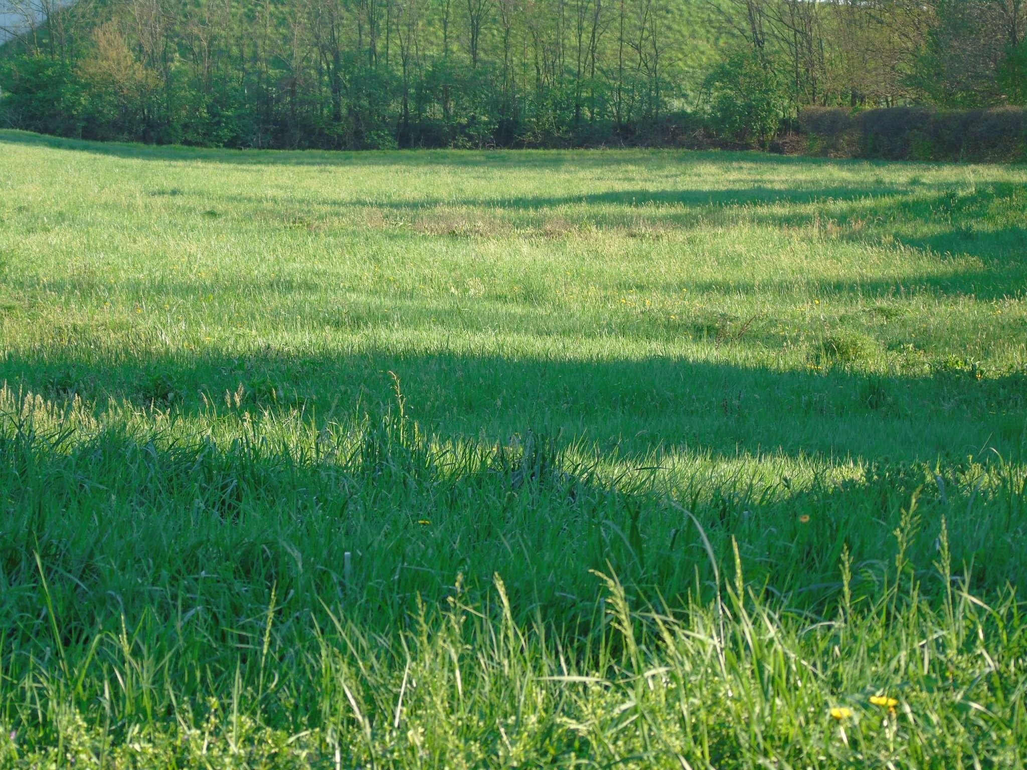 Terreno Edificabile Residenziale in Vendita a Turate