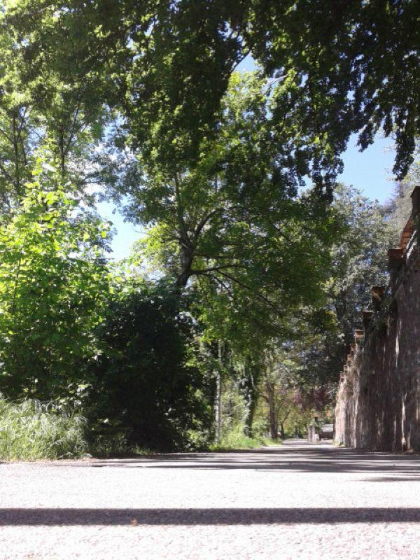 Terreno Edificabile Residenziale in vendita a Castello Cabiaglio, 9999 locali, prezzo € 42.000 | Cambio Casa.it