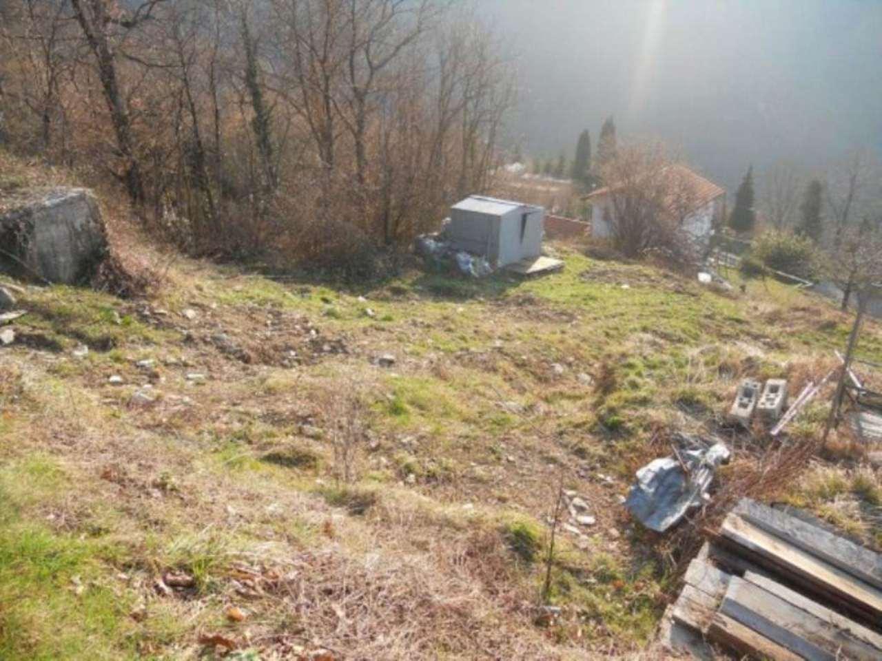 Terreno Edificabile Residenziale in vendita a Bargagli, 9999 locali, prezzo € 70.000 | CambioCasa.it