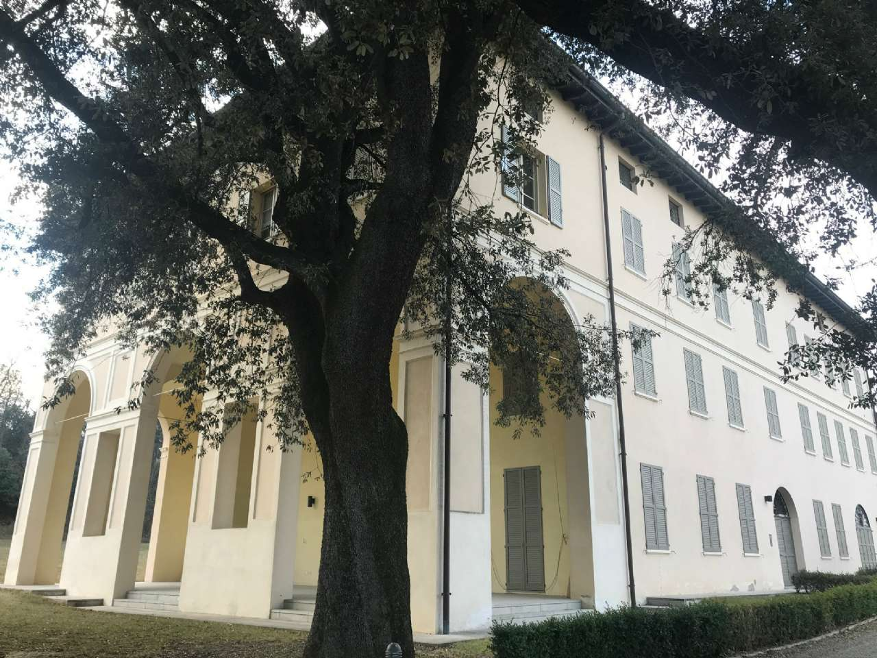 Loft / Openspace in affitto a Casalgrande, 2 locali, prezzo € 750 | CambioCasa.it