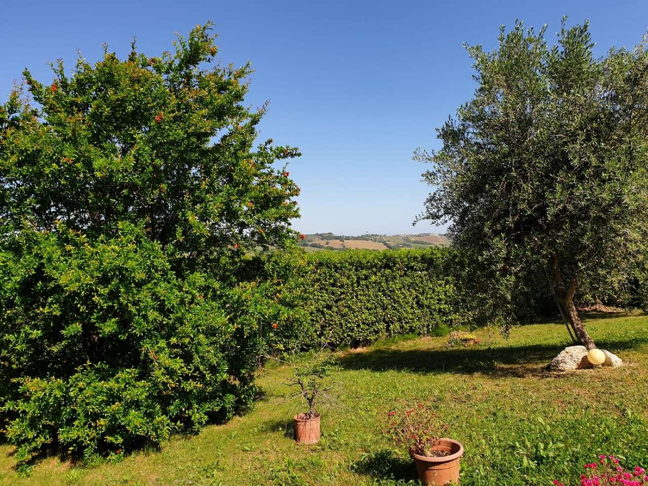Appartamento in vendita a Agugliano, 9999 locali, prezzo € 248.000   CambioCasa.it