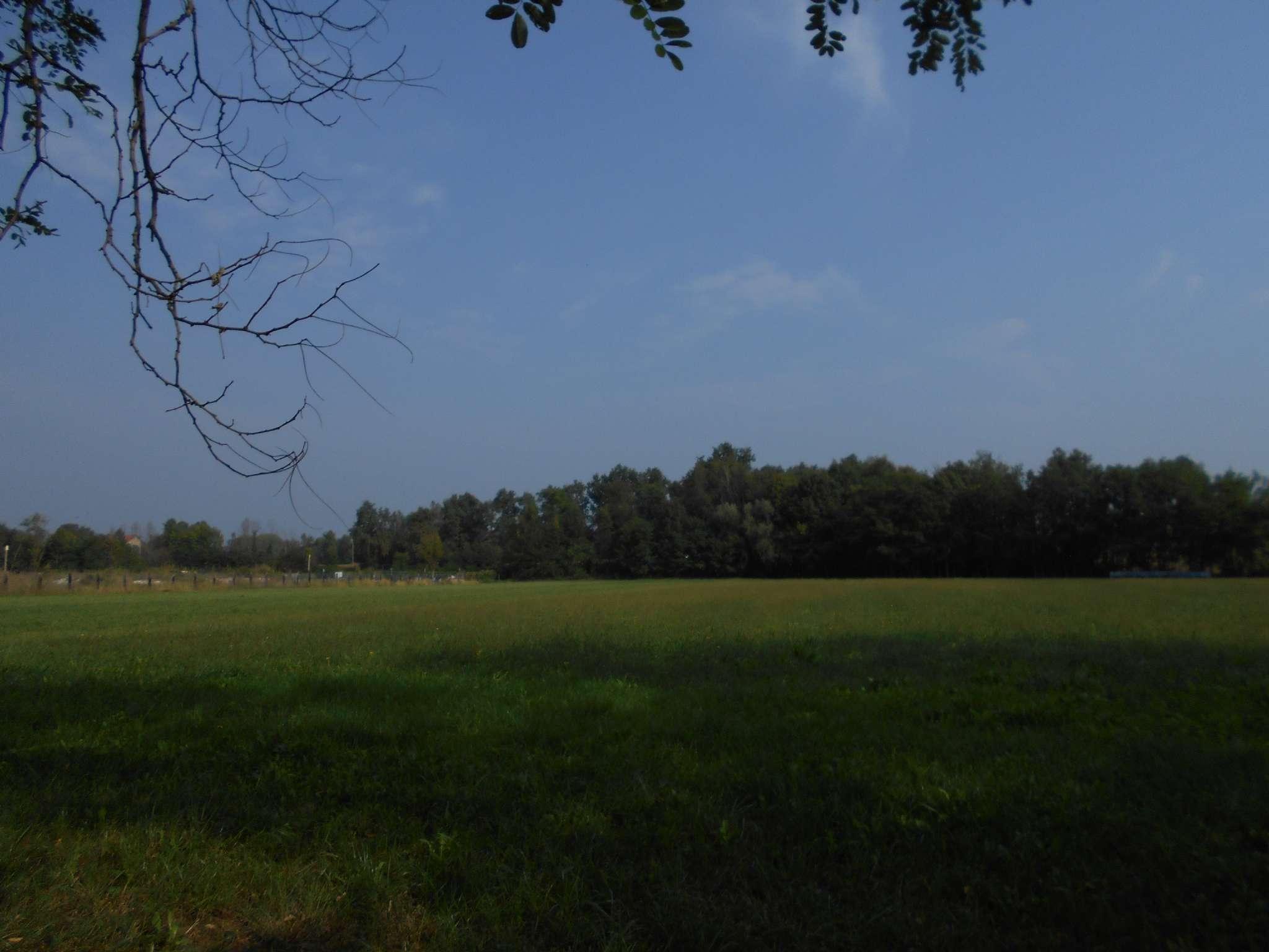 Foto 2 di Terreni Agricoli San Francesco Al Campo