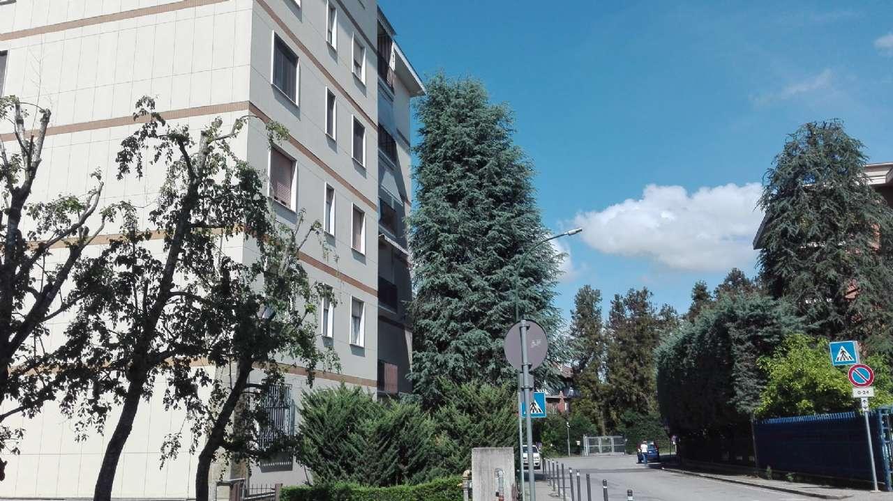 Appartamento in buone condizioni parzialmente arredato in affitto Rif. 7474795