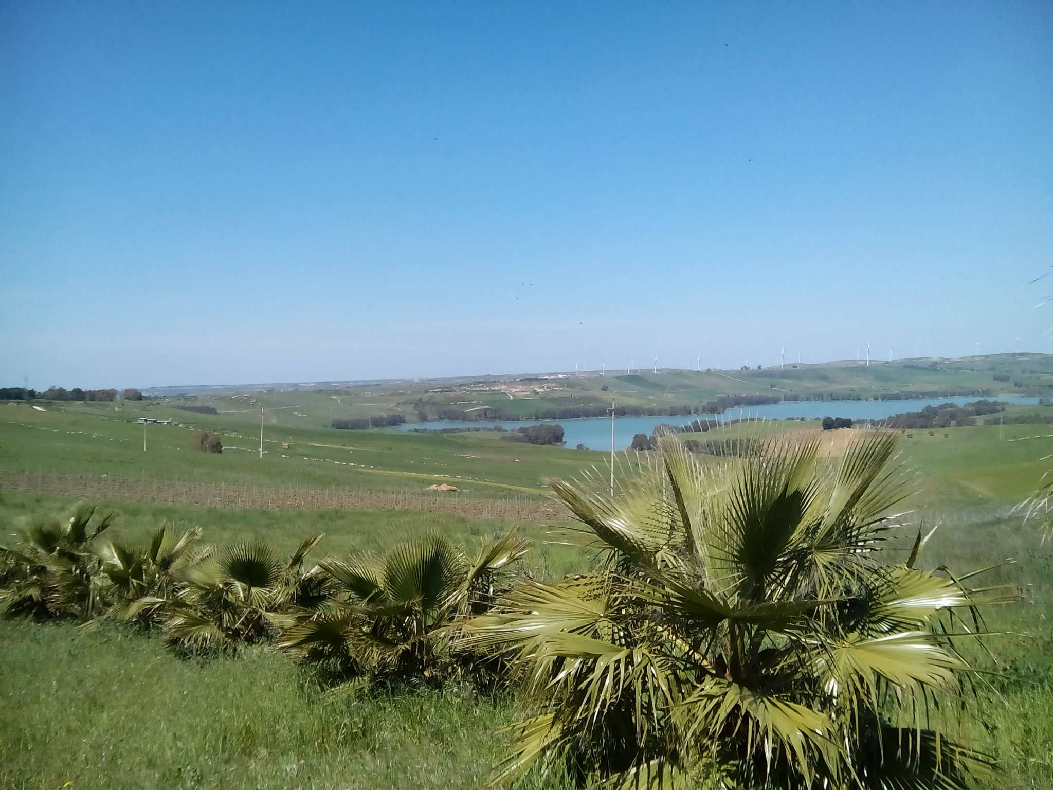 Castelvetrano terreno con vista panoramica Rif. 8356855