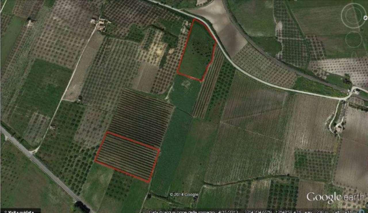 a Castelvetrano due ettari di terreno agricolo Rif. 4951539