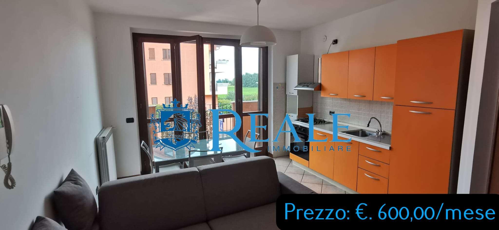 Appartamento in affitto a Vermezzo, 2 locali, prezzo € 600 | PortaleAgenzieImmobiliari.it