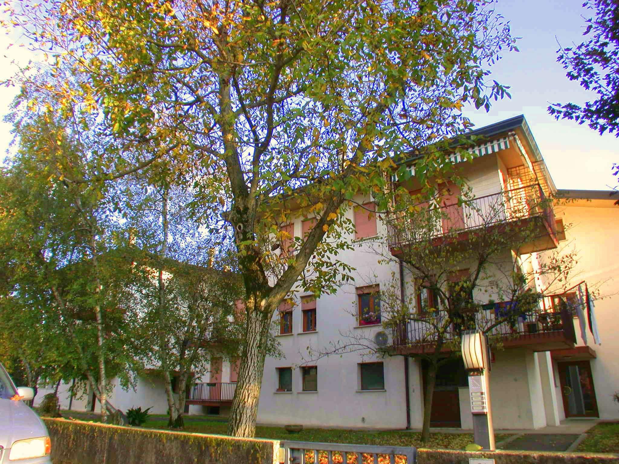Mignagola vendesi appartamento in piccola palazzina