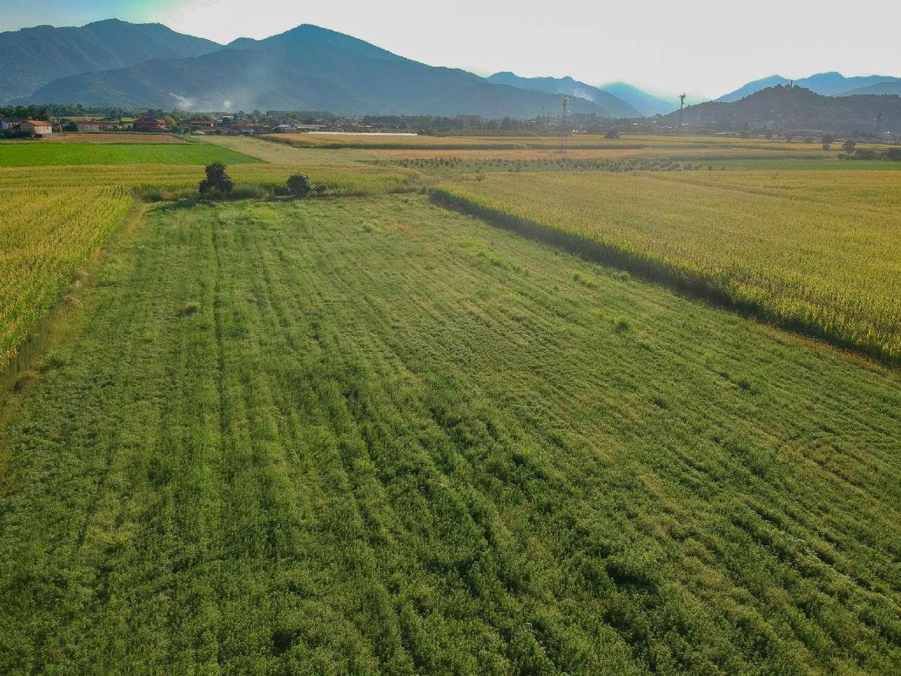 Terreno Agricolo in vendita a Caraglio, 9999 locali, prezzo € 56.000   PortaleAgenzieImmobiliari.it