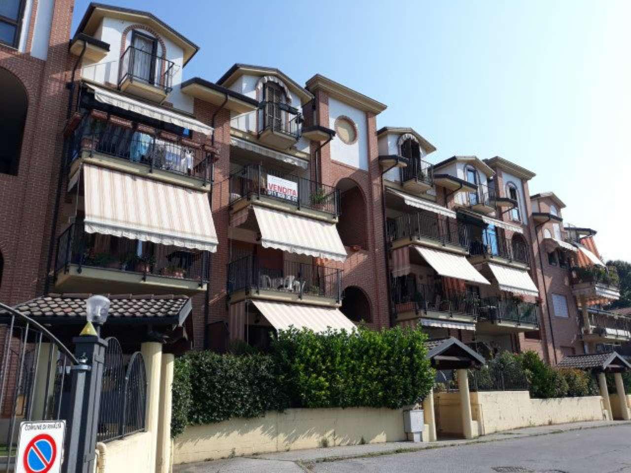Appartamento in ottime condizioni arredato in affitto Rif. 7484475