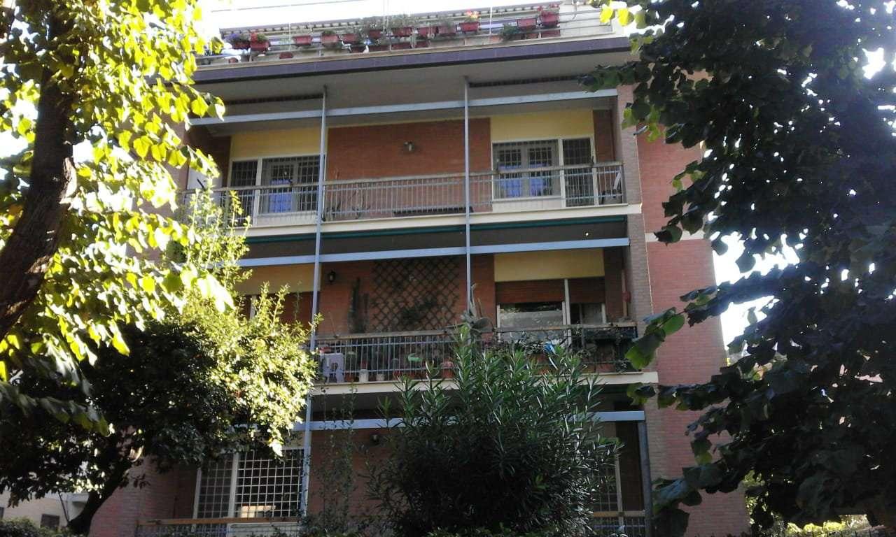 Appartamento in buone condizioni in affitto Rif. 8174686