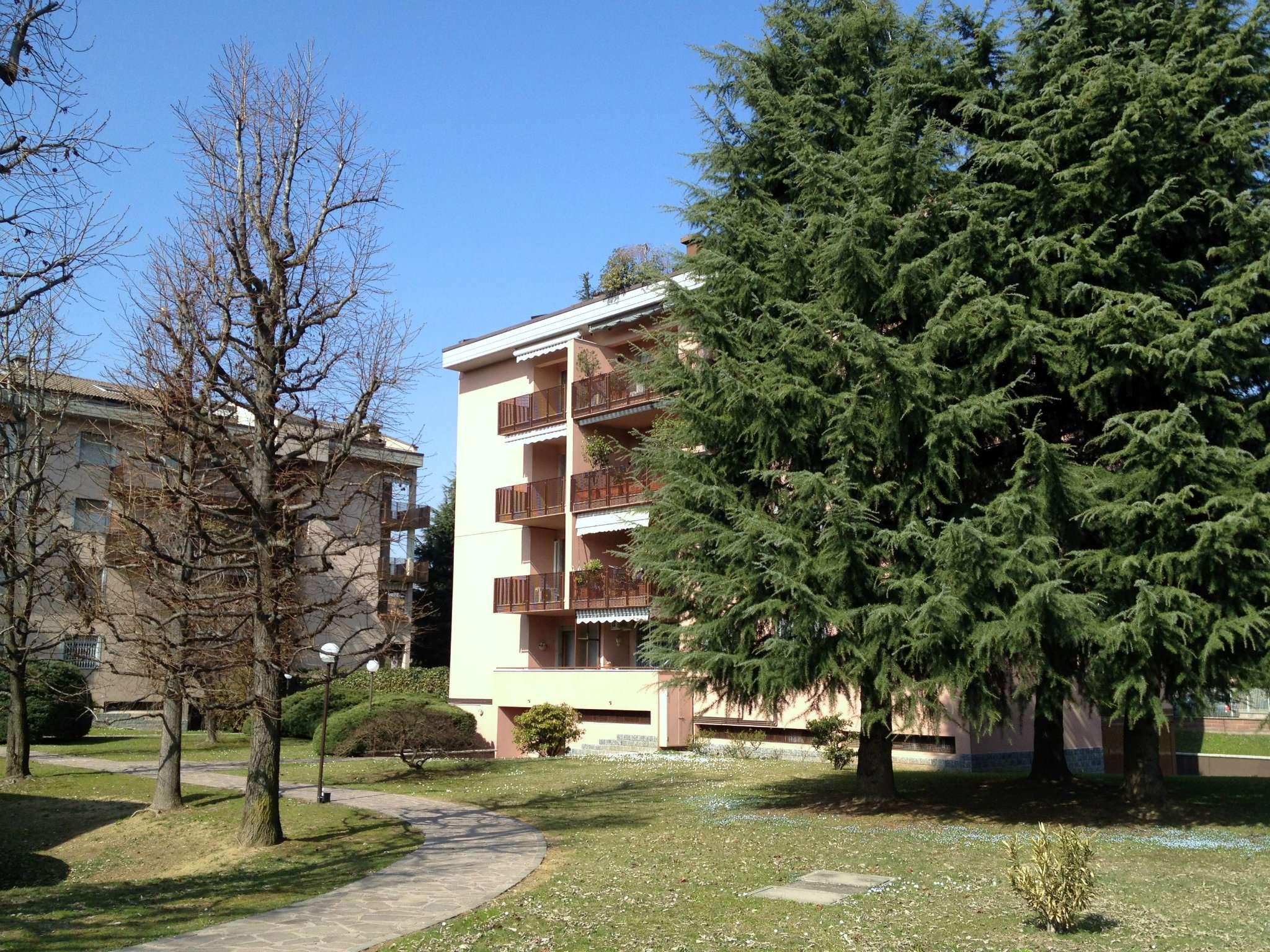 Appartamento in ottime condizioni parzialmente arredato in affitto Rif. 6839634