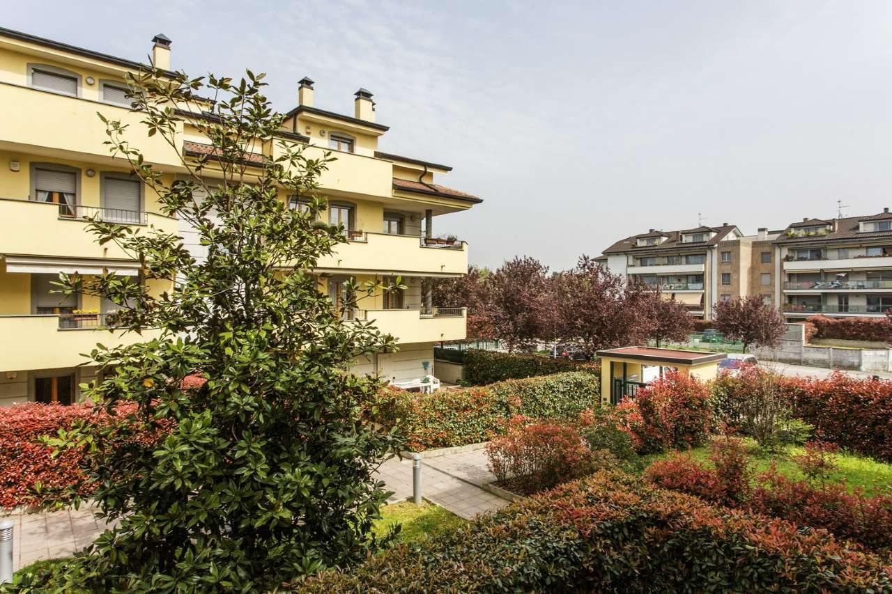 Appartamento in buone condizioni arredato in affitto Rif. 9257513