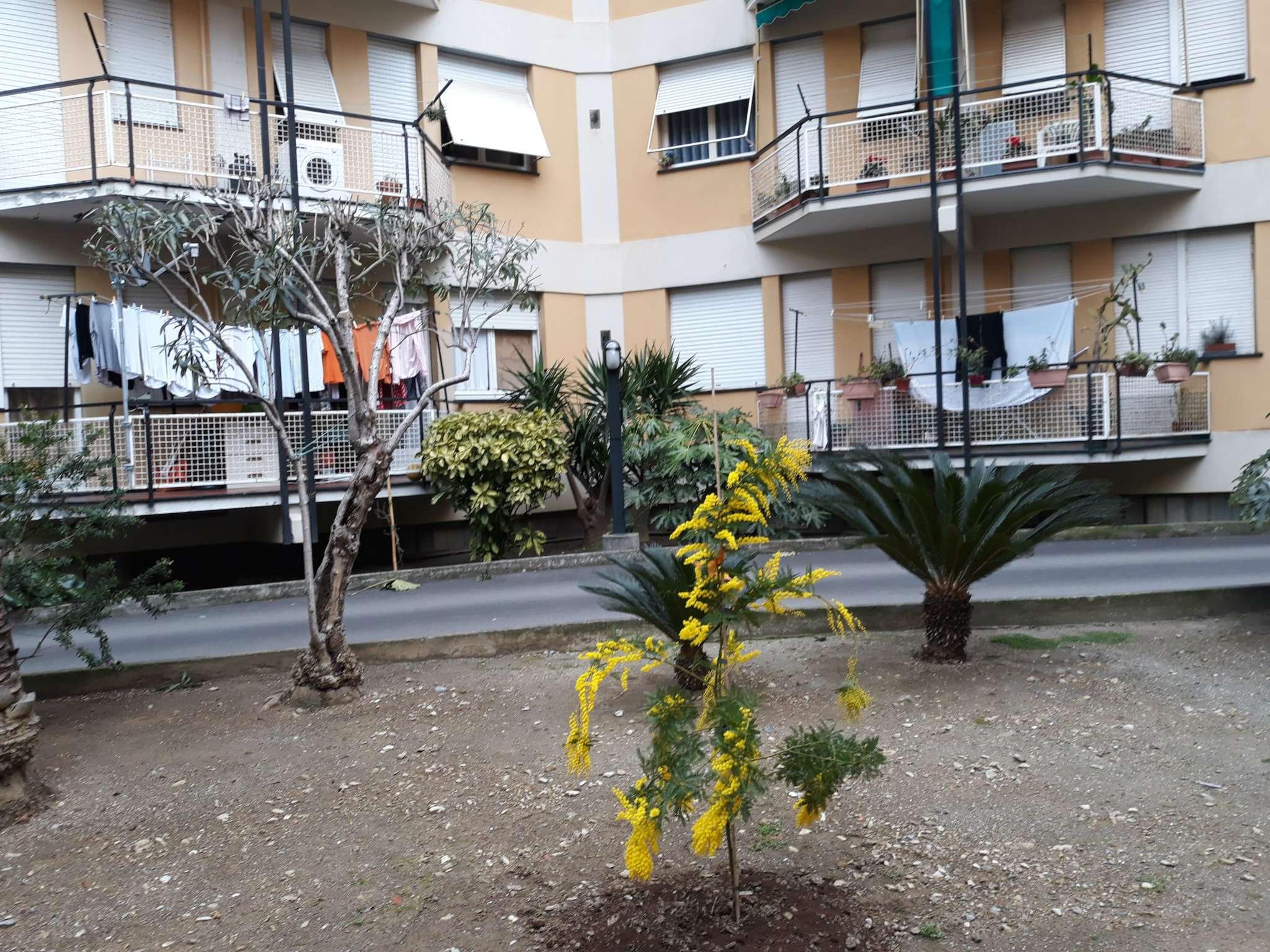 Appartamento in affitto Rif. 7810953