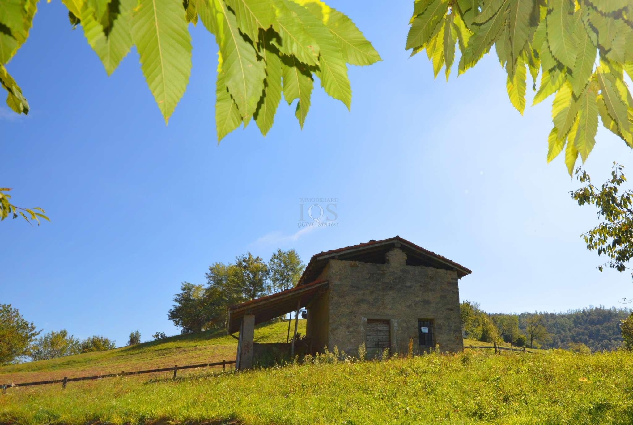 Terreno Agricolo in vendita a Foresto Sparso, 9999 locali, prezzo € 79.000 | PortaleAgenzieImmobiliari.it