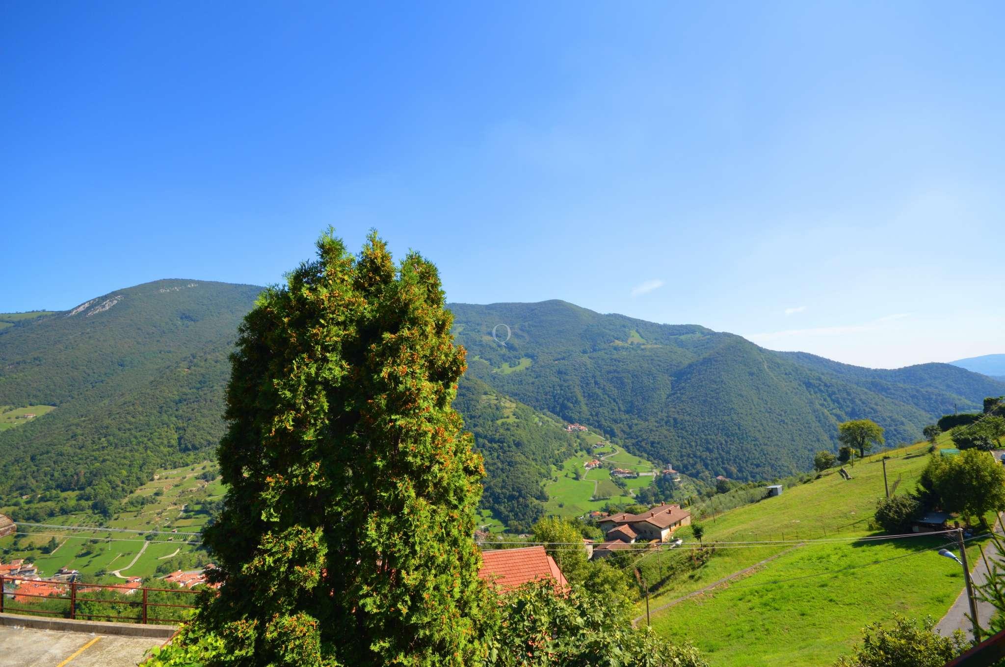 Appartamento in vendita a Adrara San Martino, 2 locali, prezzo € 45.000 | PortaleAgenzieImmobiliari.it
