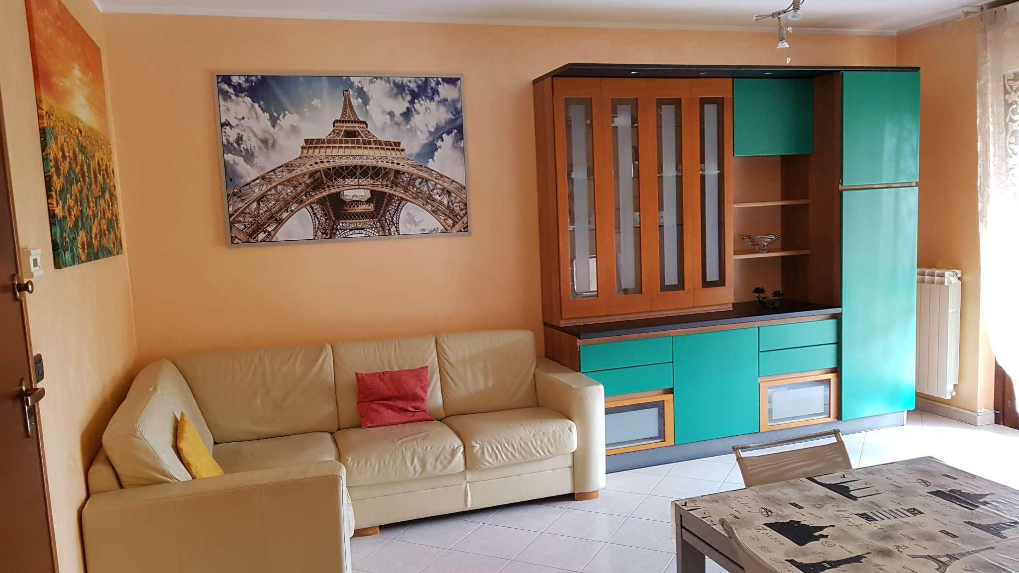 Appartamento in buone condizioni arredato in affitto Rif. 7017080