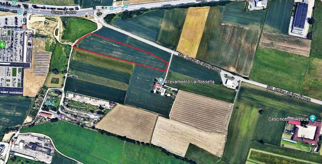 Terreno Agricolo in vendita a Grugliasco, 9999 locali, prezzo € 121.500 | PortaleAgenzieImmobiliari.it
