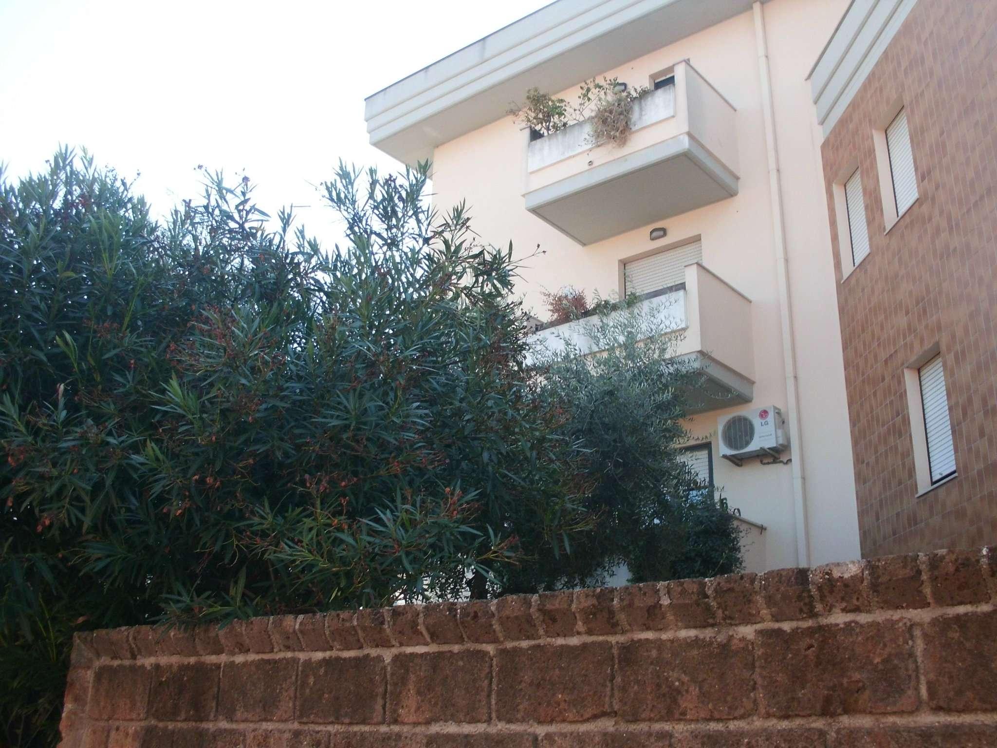 Appartamento in buone condizioni arredato in affitto Rif. 8202291