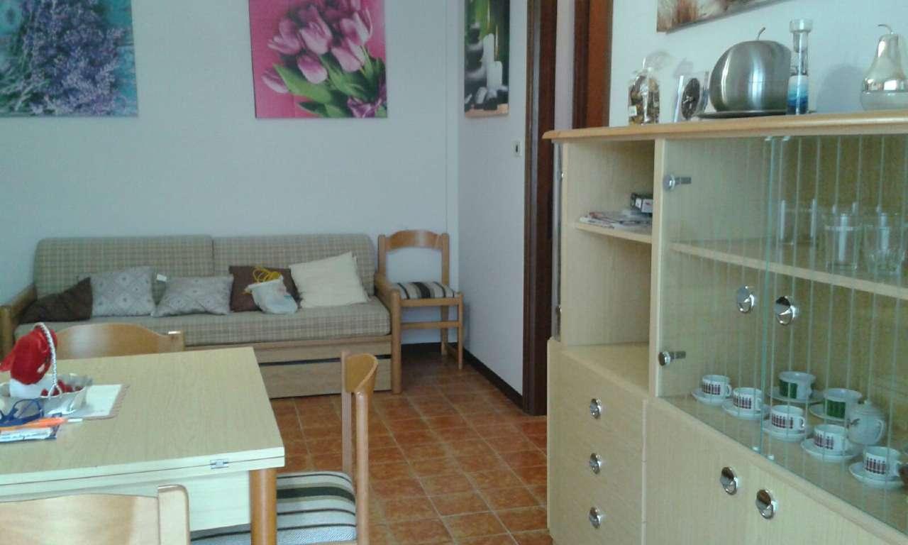 Appartamento in ottime condizioni arredato in affitto Rif. 7188655