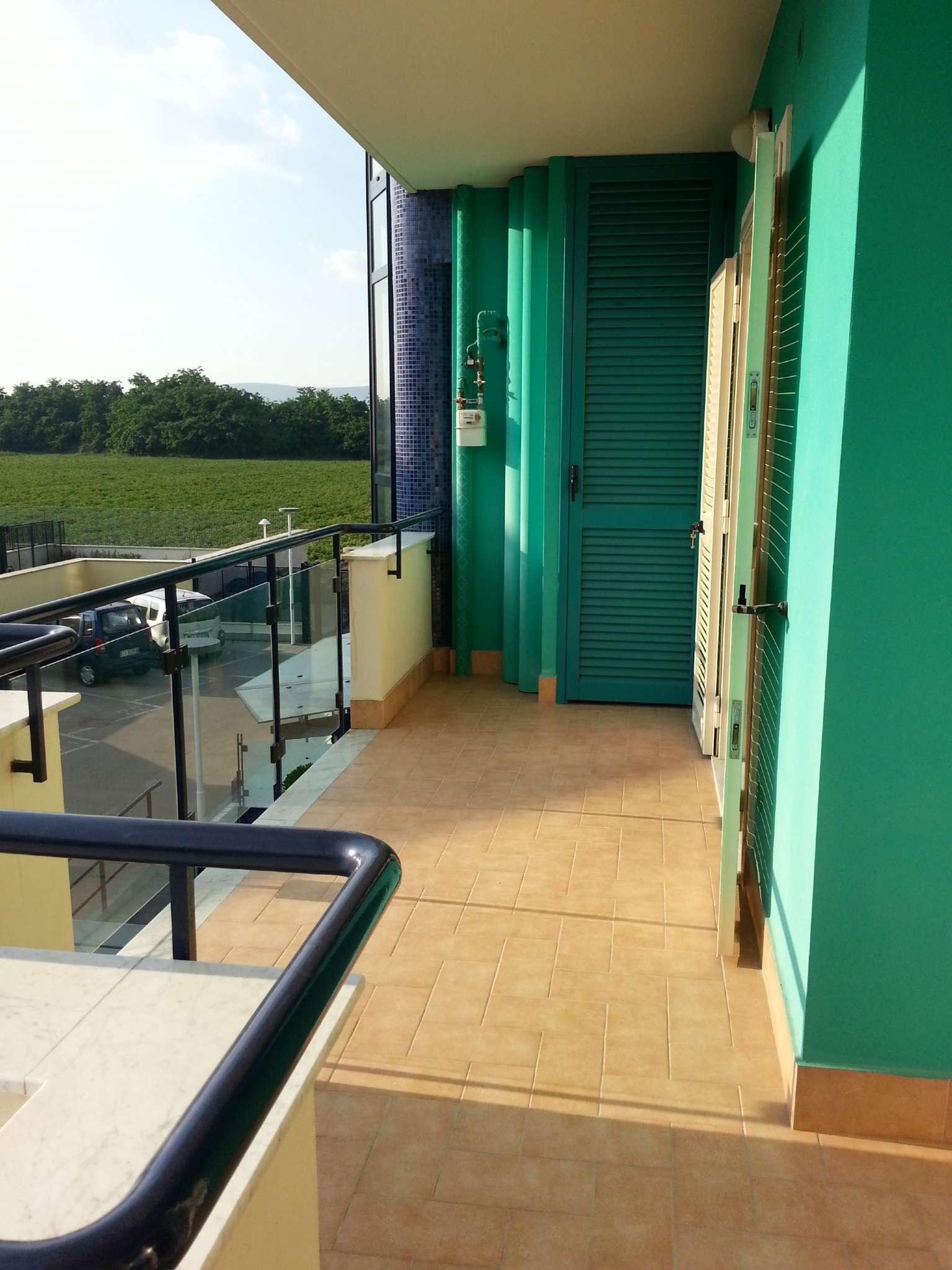 Appartamento in buone condizioni in affitto Rif. 8848959