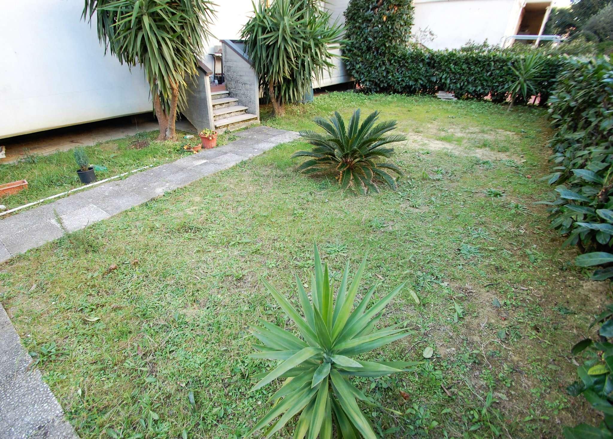 Cerco appartamento con giardino e taverna a prato - Altezza alberi giardino privato condominio ...