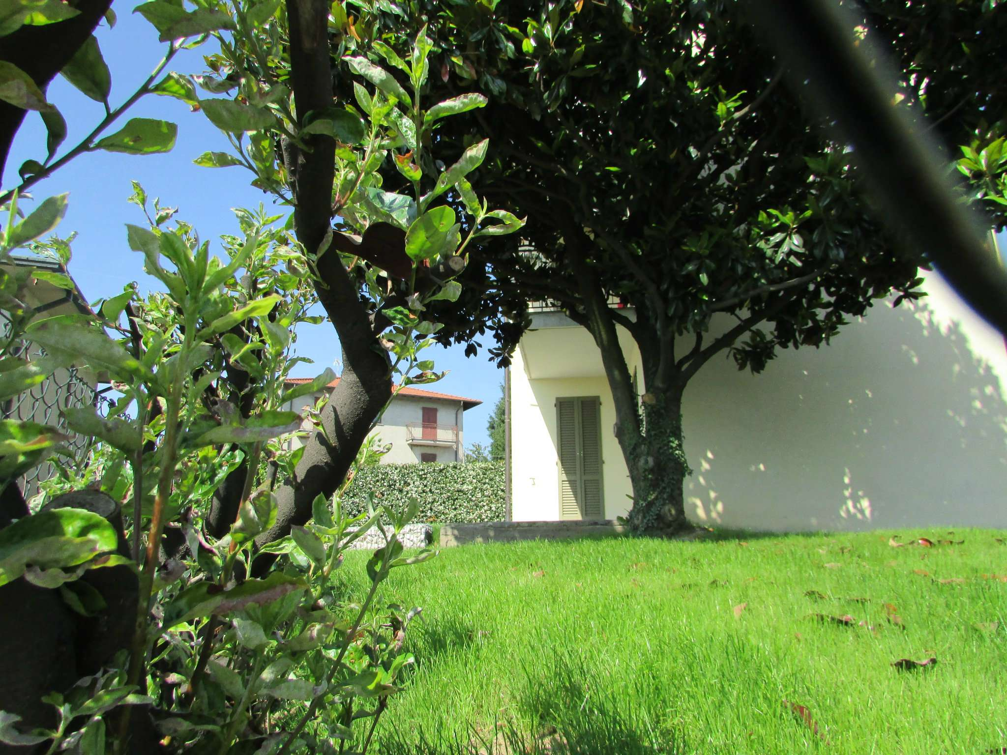 Trilocale con giardino Cucciago