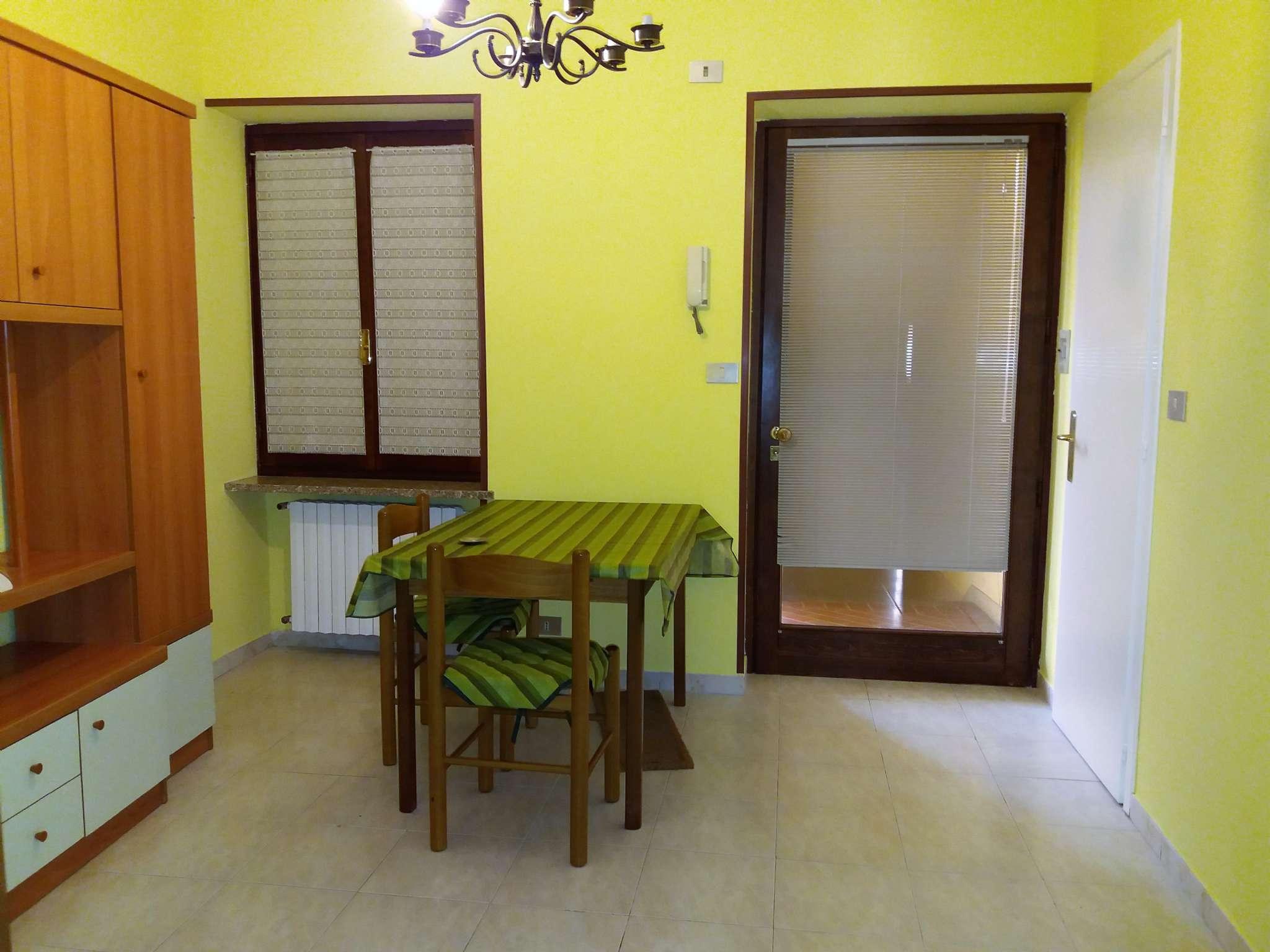 Appartamento in ottime condizioni arredato in affitto Rif. 6728048