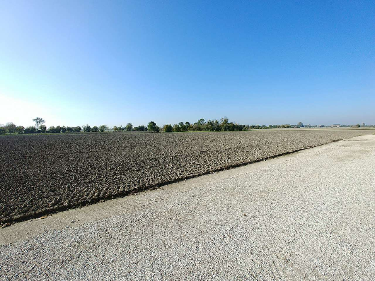 Terreno agricolo 23 campi e abitazione Bovolenta Rif. 8563262