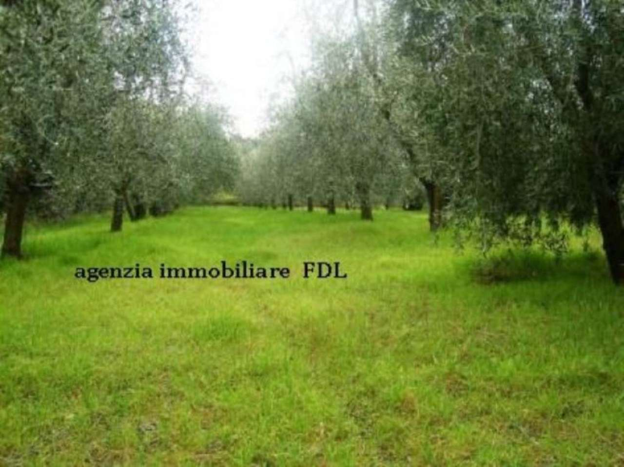 Terreno Agricolo in Vendita a Montopoli in Val d'Arno