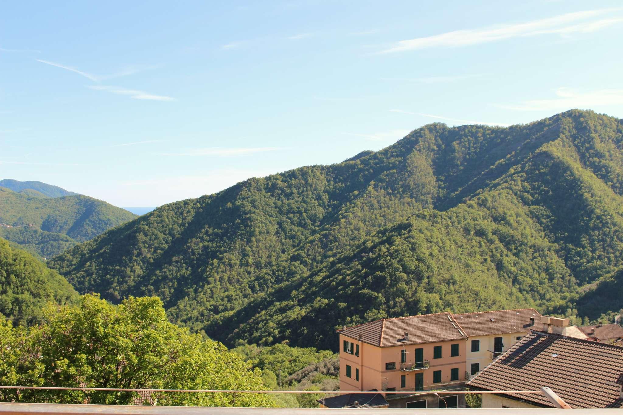 Appartamento in affitto a Uscio, 4 locali, prezzo € 350 | PortaleAgenzieImmobiliari.it
