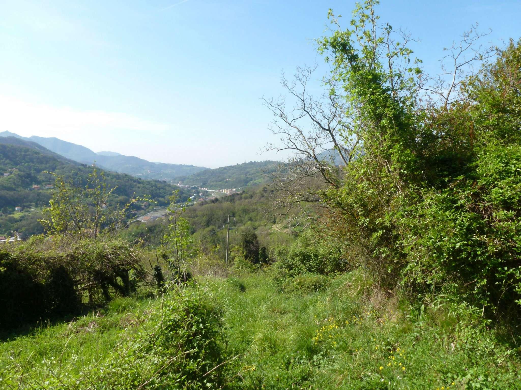 Terreno Edificabile Residenziale in vendita a Serra Riccò, 1 locali, prezzo € 50.000   CambioCasa.it