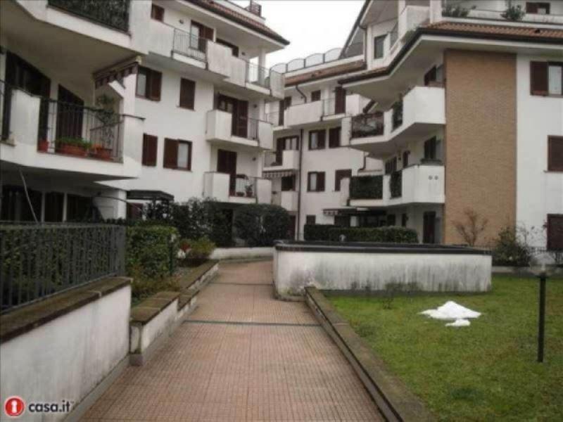 Appartamento in buone condizioni arredato in affitto Rif. 8832021