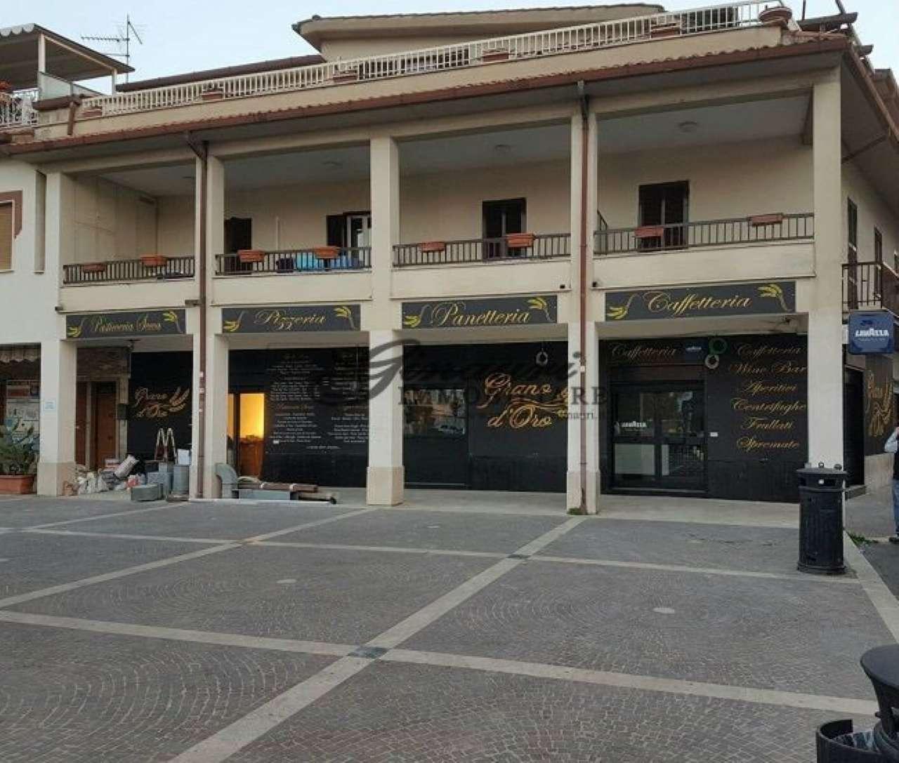 Attivit e licenze in vendita a guidonia montecelio - Agenzie immobiliari guidonia ...