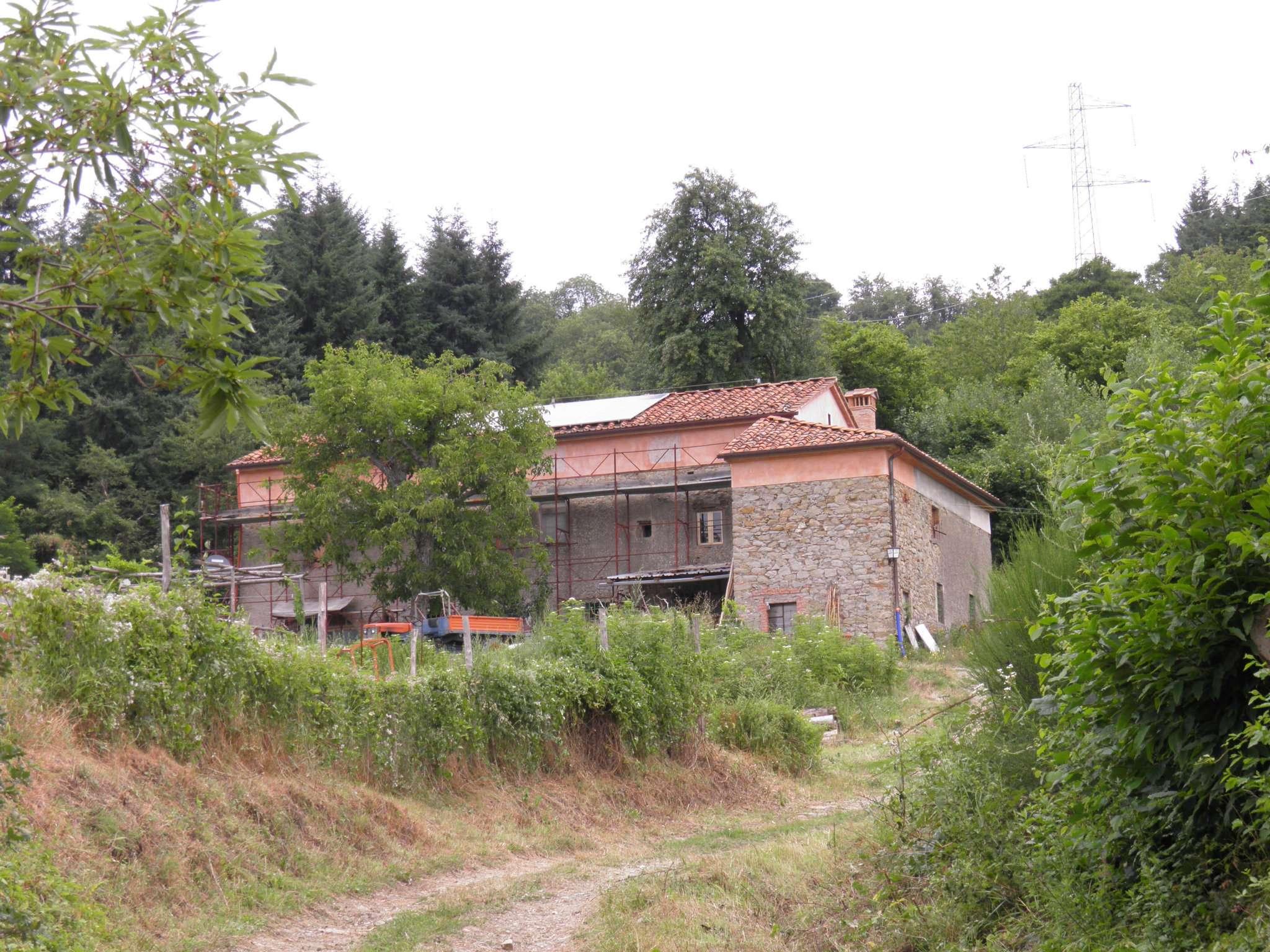 Vernio, azienda Agricola con bella colonica in posizione unica