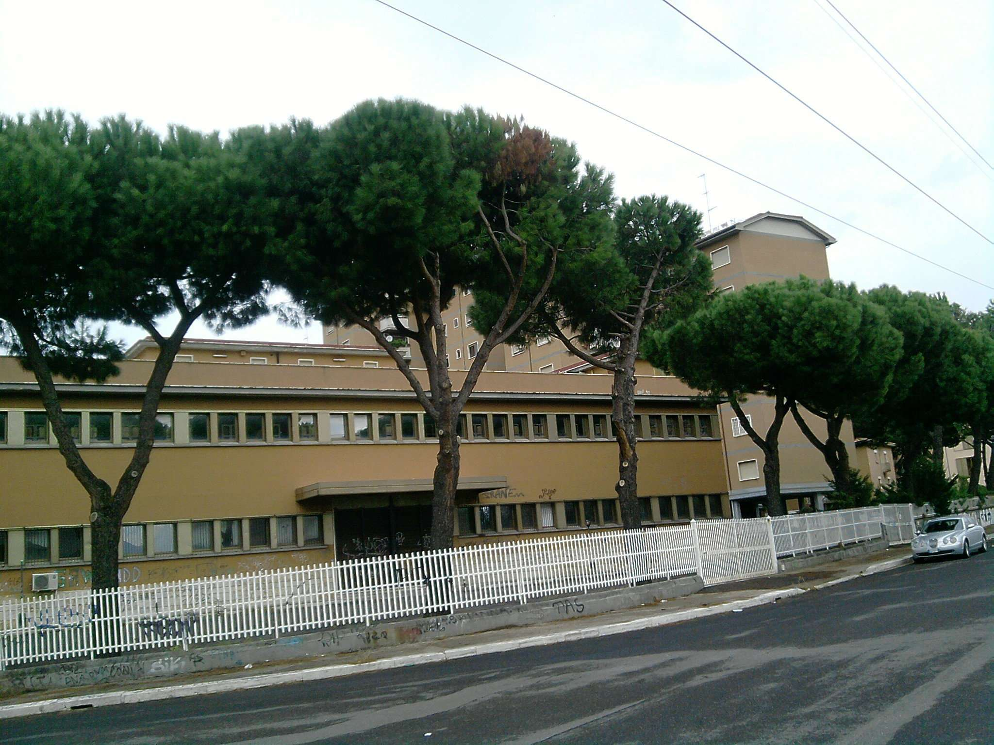Immobile Commerciale in Affitto a Roma