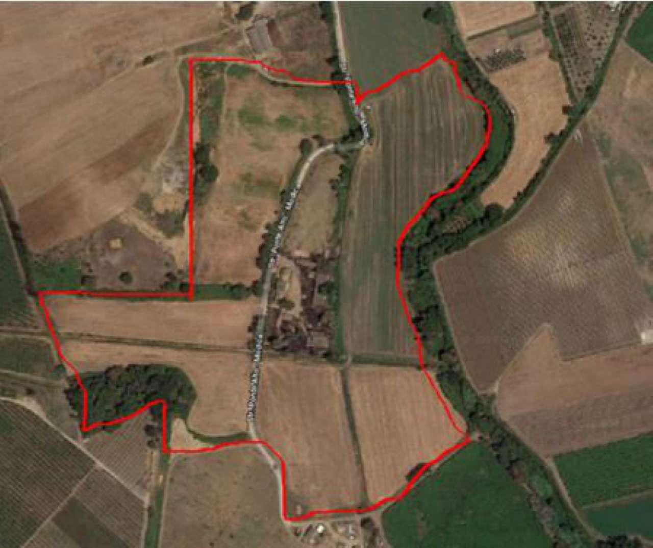 Latina- Borgo le Ferriere splendida Scuderia con 17 ettari di terreno