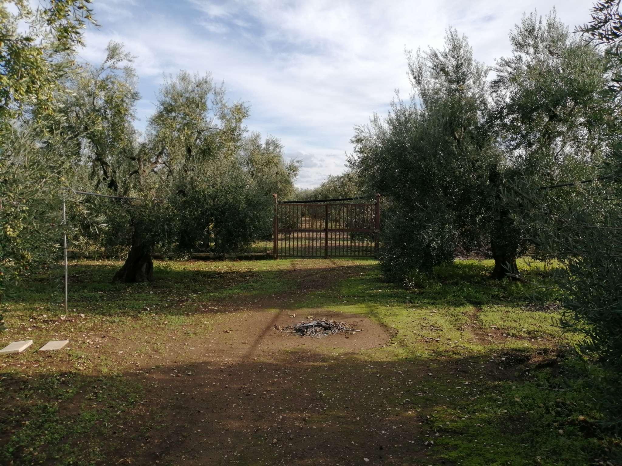 Terreno Agricolo in vendita a Bisceglie, 9999 locali, prezzo € 22.000 | CambioCasa.it