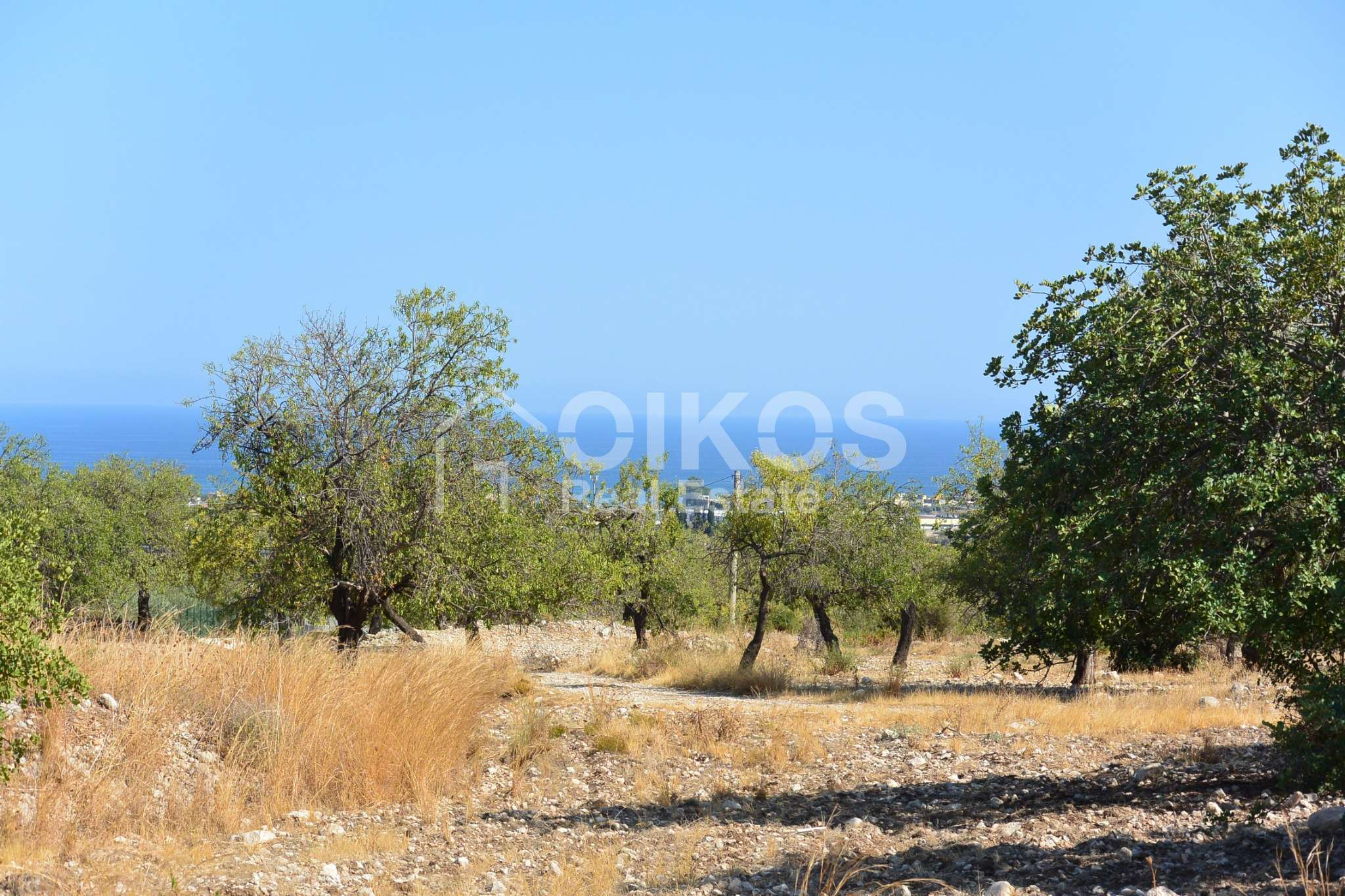 Terreno Agricolo in vendita a Noto, 9999 locali, prezzo € 90.000   CambioCasa.it