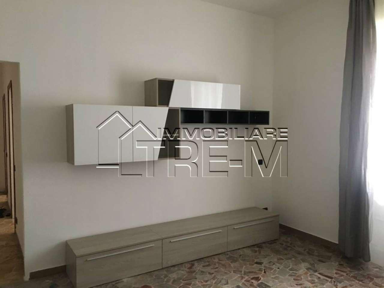 Appartamento in buone condizioni arredato in affitto Rif. 5919769