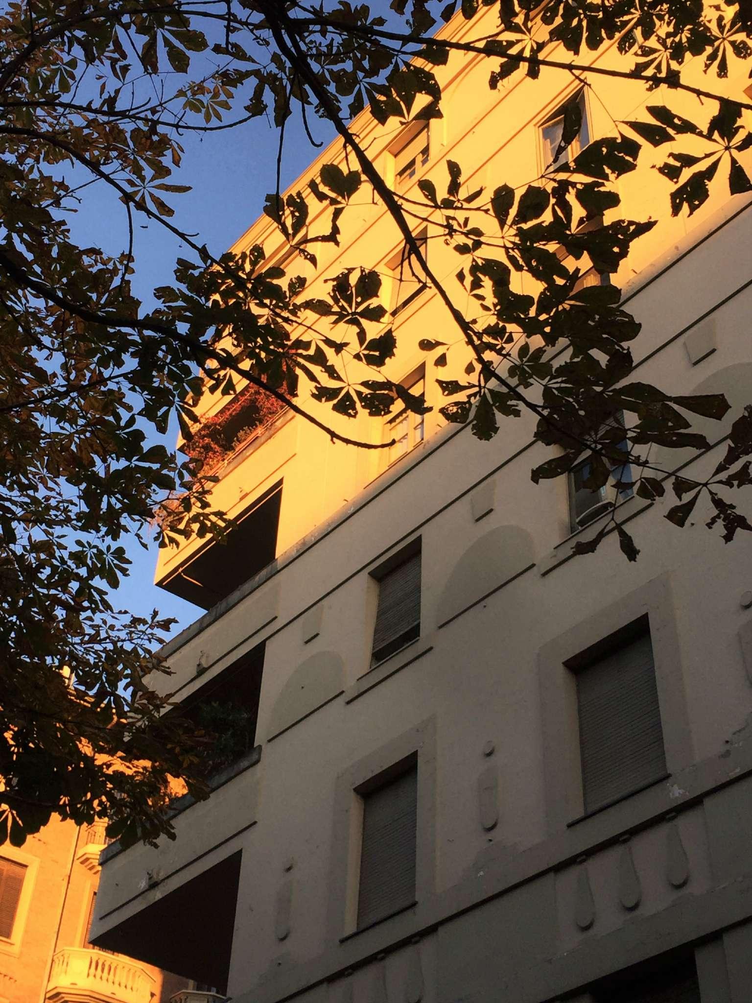 Appartamento in buone condizioni in affitto Rif. 7932991