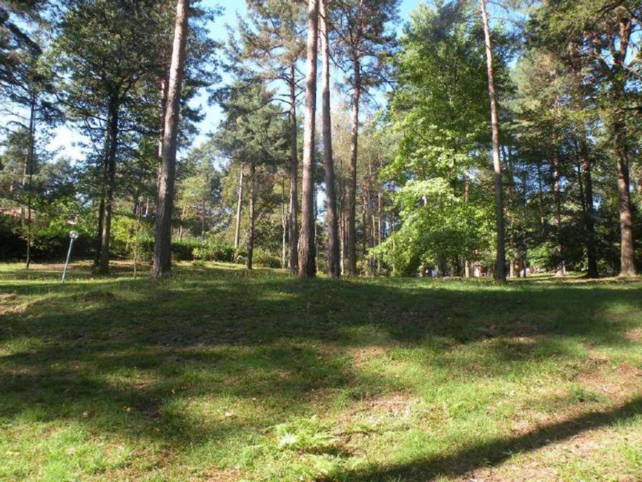 Terreno Edificabile Residenziale in Vendita a Casale Litta