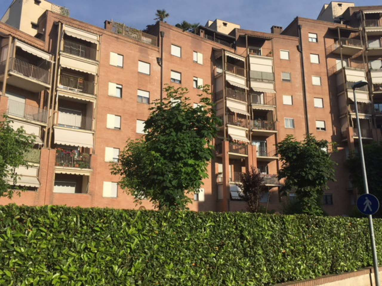 Appartamento in ottime condizioni arredato in affitto Rif. 6908847