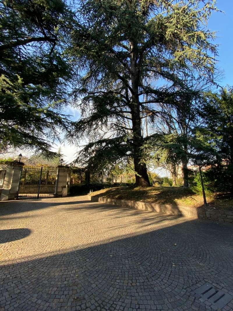 RIVOLI - Villa d'epoca con parco, foto 6