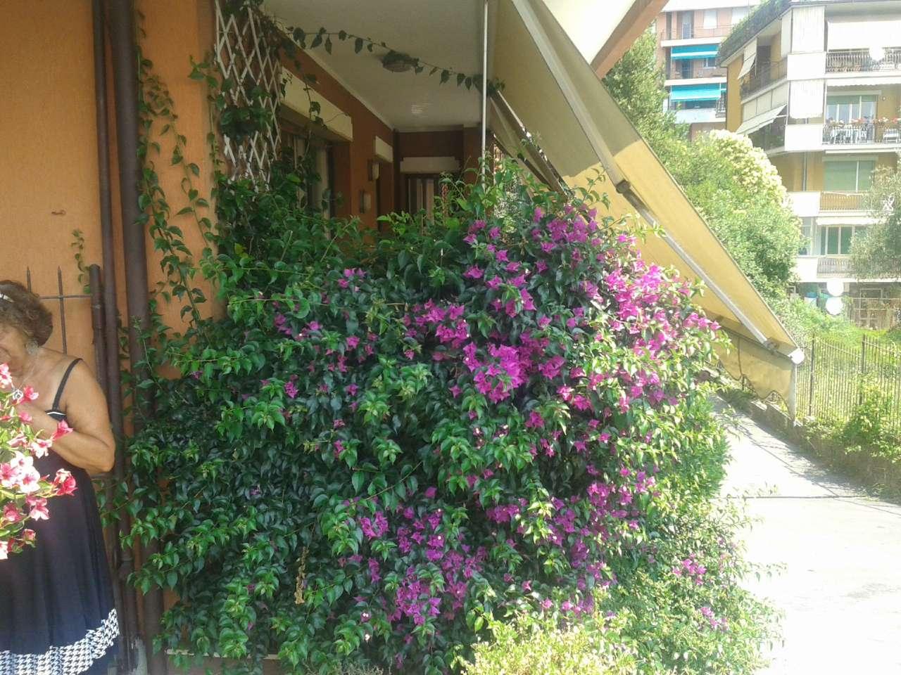 Appartamento in vendita a Chiavari, 5 locali, prezzo € 310.000 | CambioCasa.it